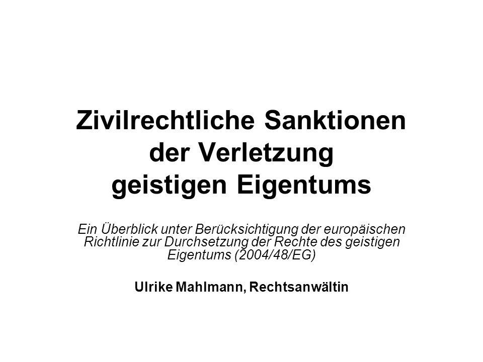 Zivilrechtliche Sanktionen der Verletzung geistigen Eigentums