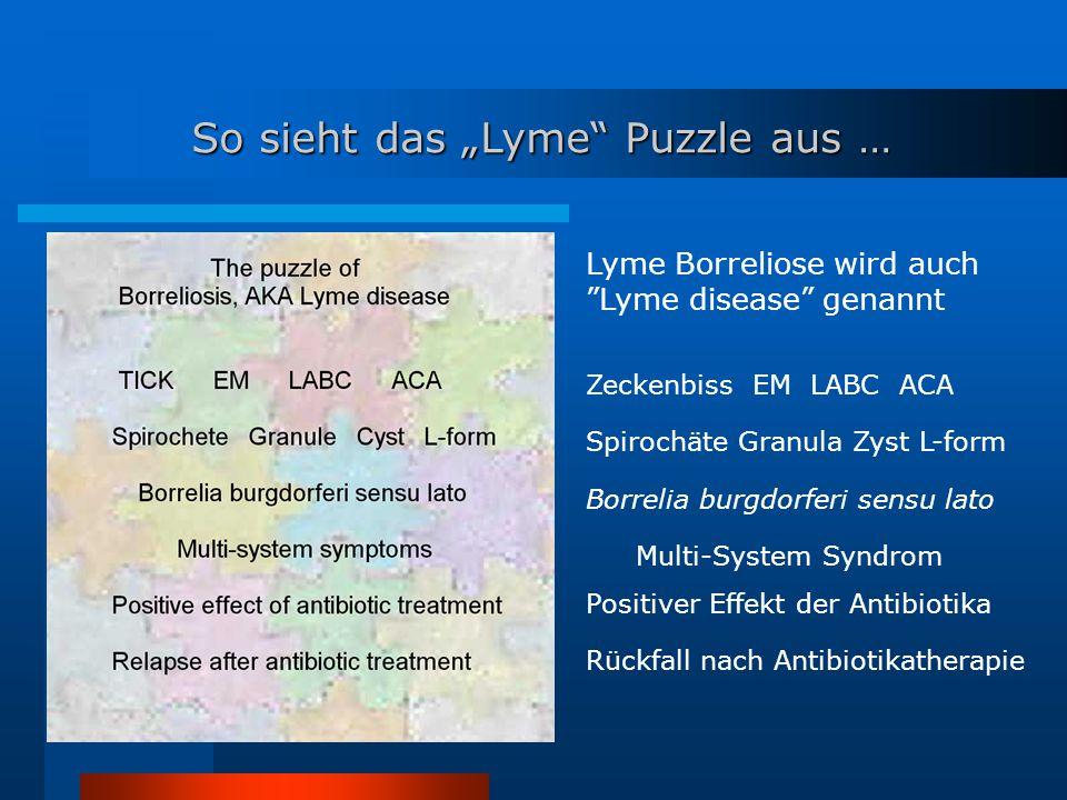 "So sieht das ""Lyme Puzzle aus …"