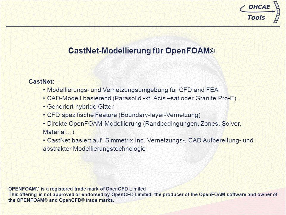CastNet-Modellierung für OpenFOAM®