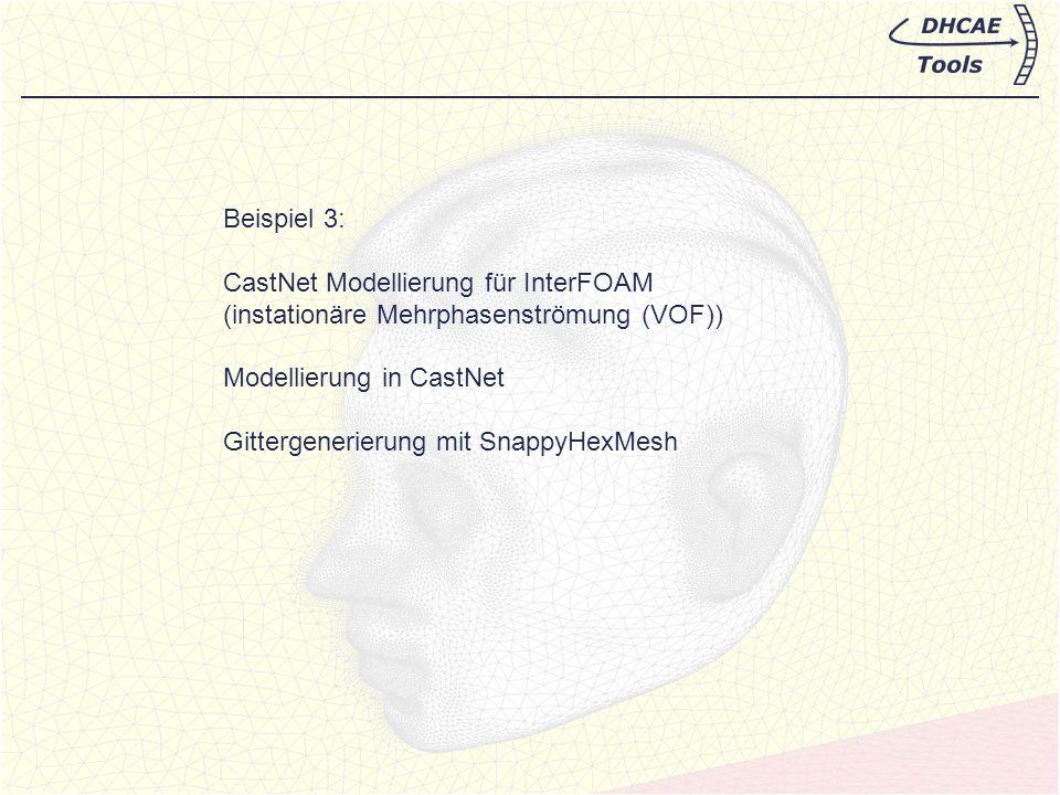 Beispiel 3: CastNet Modellierung für InterFOAM. (instationäre Mehrphasenströmung (VOF)) Modellierung in CastNet.