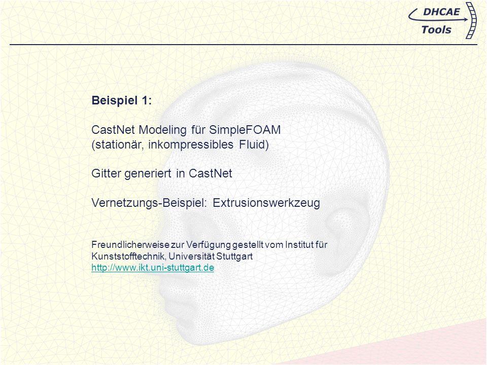 CastNet Modeling für SimpleFOAM (stationär, inkompressibles Fluid)