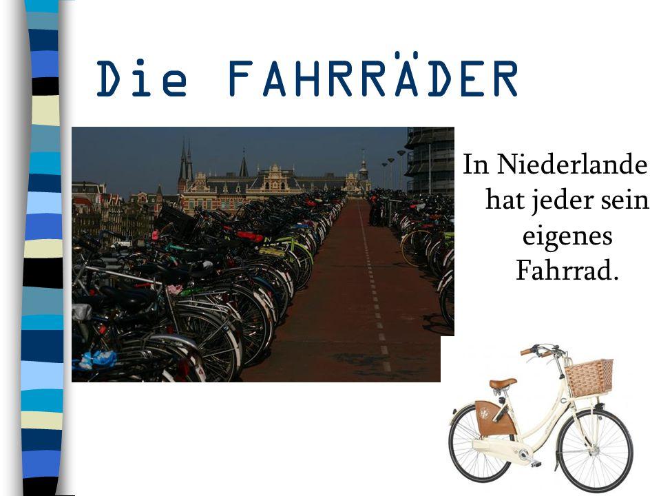 In Niederlande hat jeder sein eigenes Fahrrad.