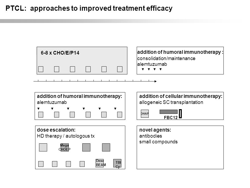 PTCL: approaches to improved treatment efficacy