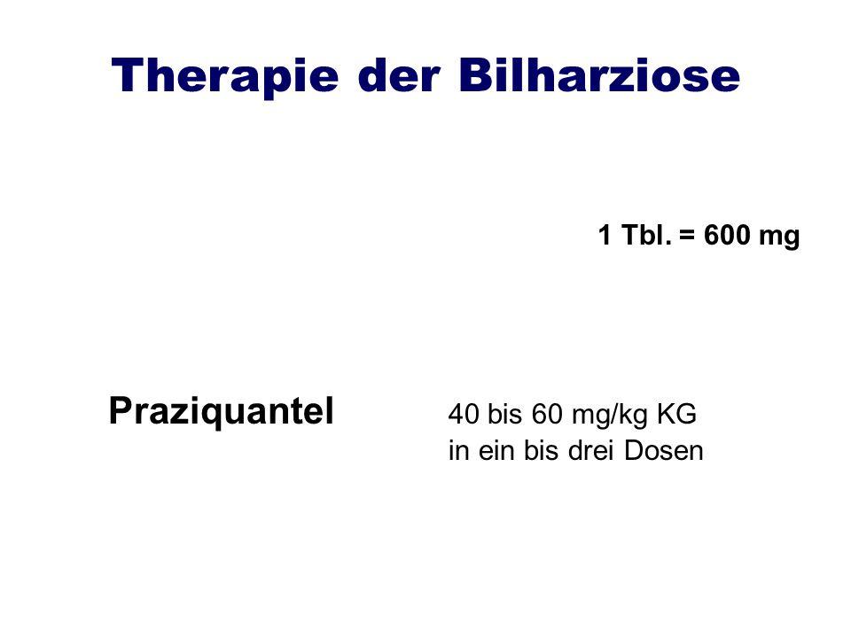 Therapie der Bilharziose