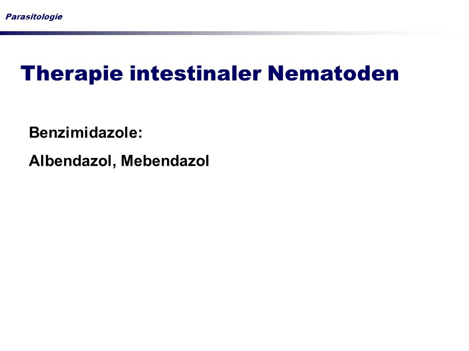 Therapie intestinaler Nematoden