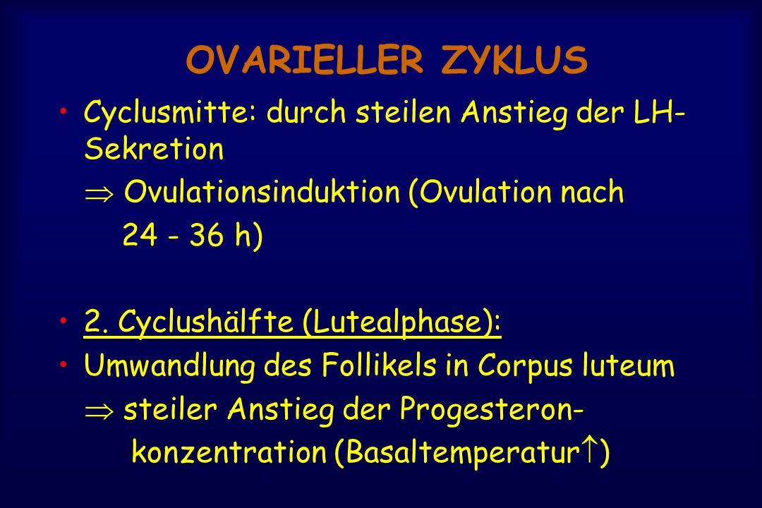 OVARIELLER ZYKLUS Cyclusmitte: durch steilen Anstieg der LH-Sekretion