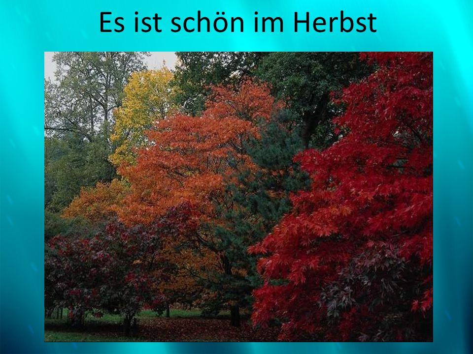 Es ist schön im Herbst