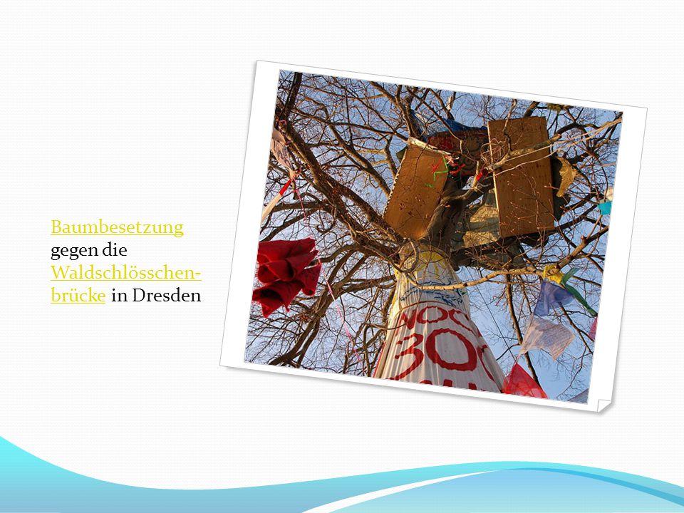 Baumbesetzung gegen die Waldschlösschen- brücke in Dresden