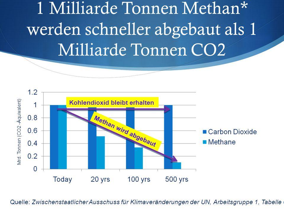 1 Milliarde Tonnen Methan
