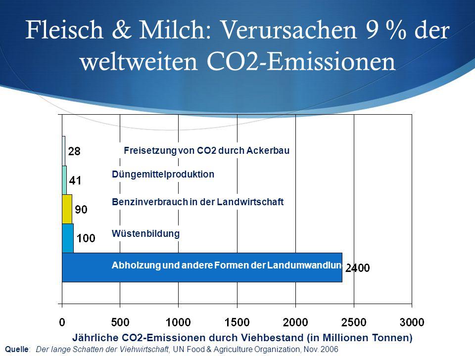 Fleisch & Milch: Verursachen 9 % der weltweiten CO2-Emissionen
