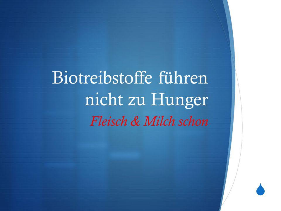 Biotreibstoffe führen nicht zu Hunger
