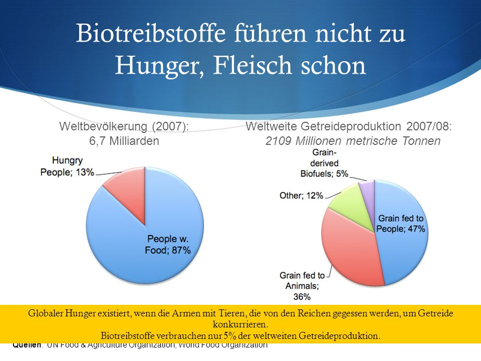 Biotreibstoffe führen nicht zu Hunger, Fleisch schon