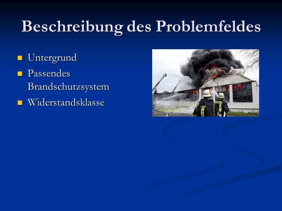 Beschreibung des Problemfeldes