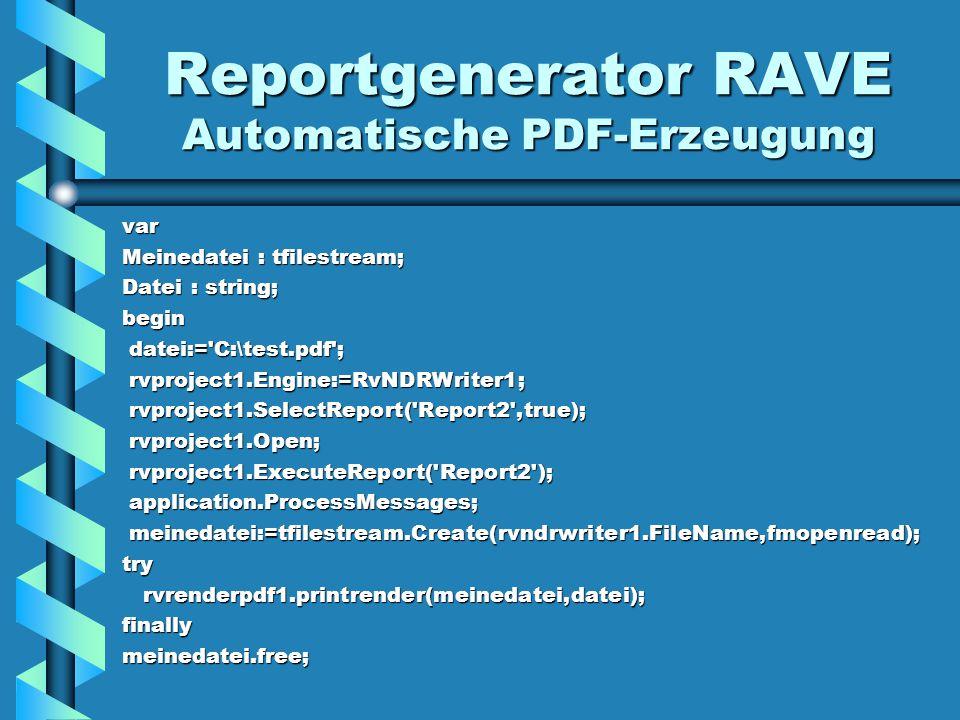 Reportgenerator RAVE Automatische PDF-Erzeugung