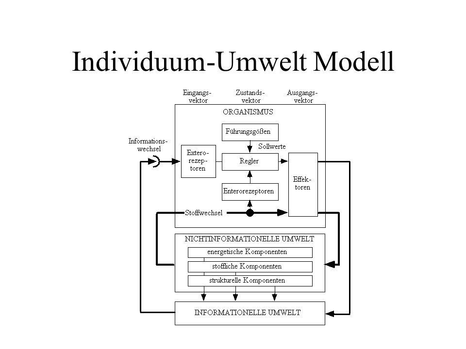Individuum-Umwelt Modell
