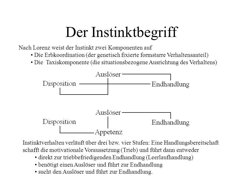 Der Instinktbegriff Nach Lorenz weist der Instinkt zwei Komponenten auf. Die Erbkoordination (der genetisch fixierte formstarre Verhaltensanteil)
