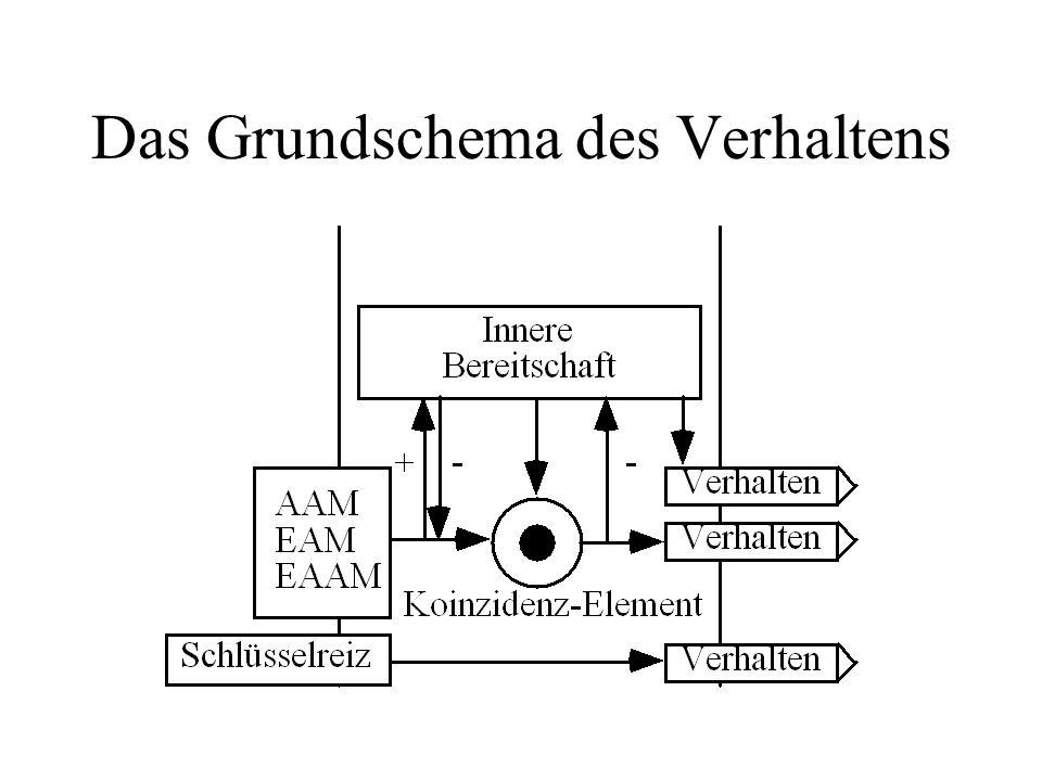 Fantastisch Grundschema Des Lüfterrelais Fotos - Elektrische ...