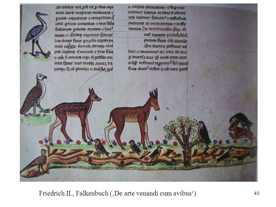 Friedrich II., Falkenbuch ('De arte venandi cum avibus')