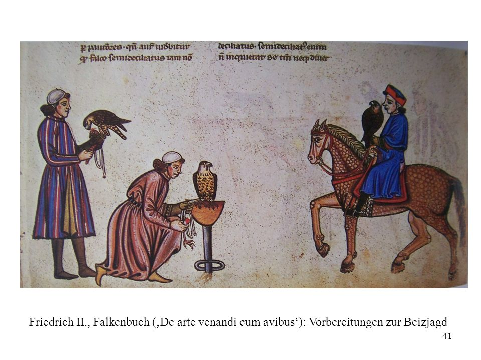 Friedrich II., Falkenbuch ('De arte venandi cum avibus'): Vorbereitungen zur Beizjagd
