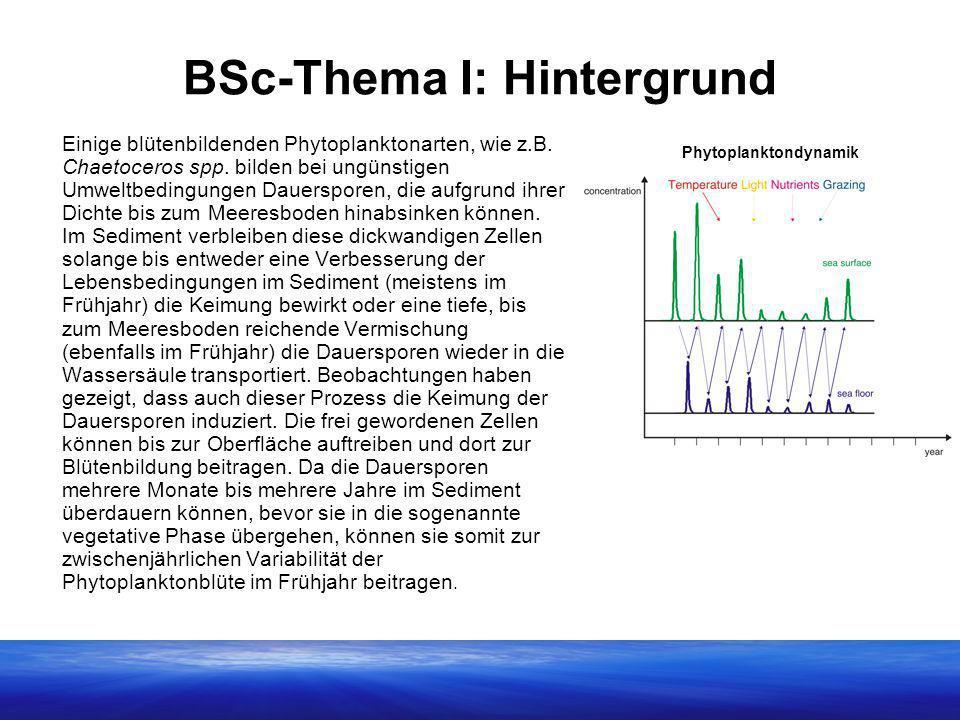 BSc-Thema I: Hintergrund