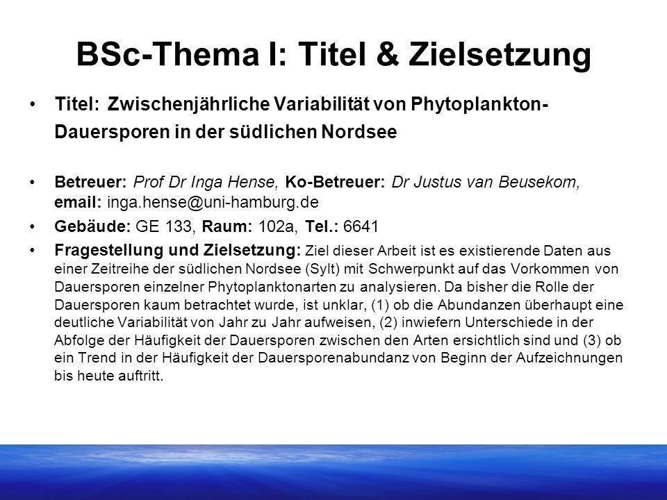 BSc-Thema I: Titel & Zielsetzung