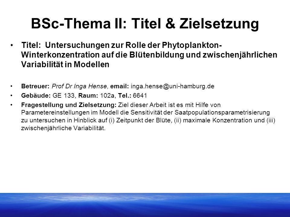 BSc-Thema II: Titel & Zielsetzung
