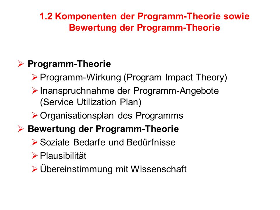 Programm-Wirkung (Program Impact Theory)