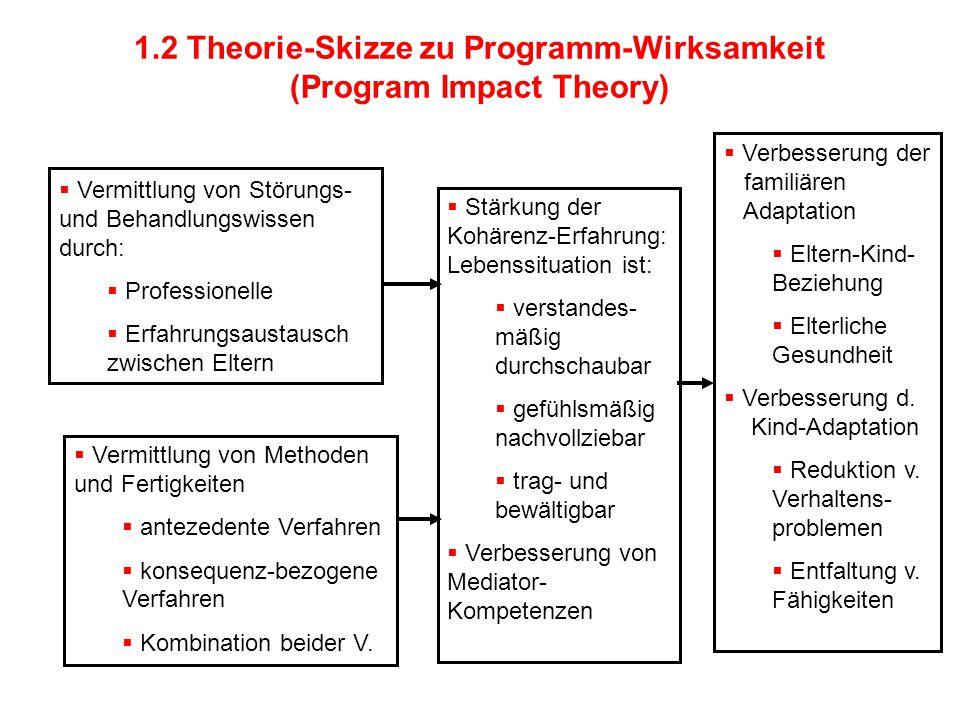 1.2 Theorie-Skizze zu Programm-Wirksamkeit (Program Impact Theory)