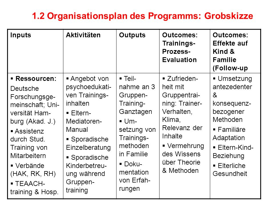1.2 Organisationsplan des Programms: Grobskizze