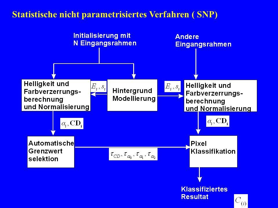 Statistische nicht parametrisiertes Verfahren ( SNP)
