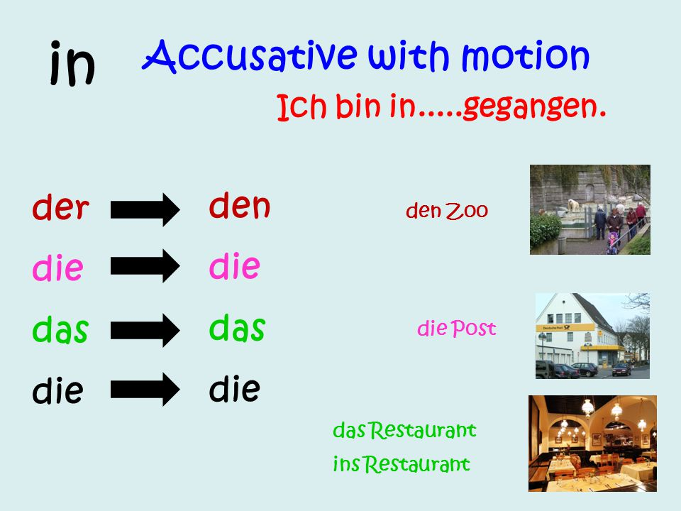 in Accusative with motion der den die die das das