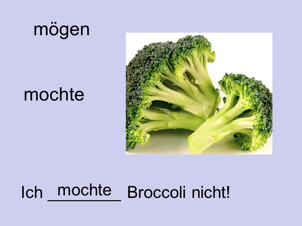 mögen mochte Ich ________ Broccoli nicht! mochte