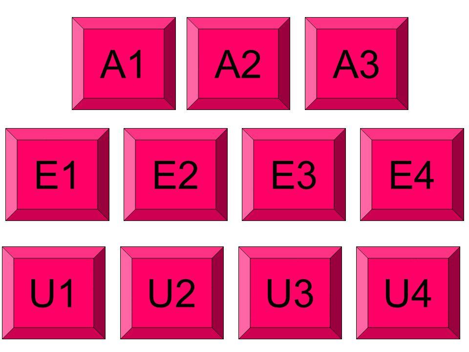 A1 A2 A3 E1 E2 E3 E4 U1 U2 U3 U4