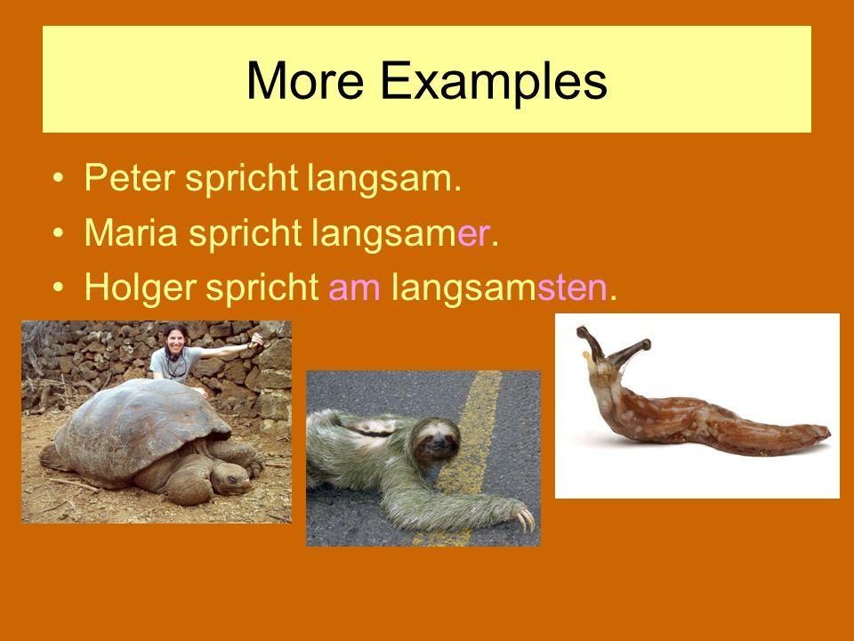 More Examples Peter spricht langsam. Maria spricht langsamer.