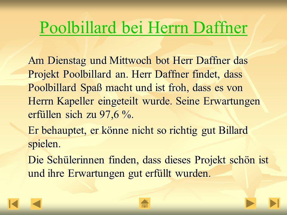 Poolbillard bei Herrn Daffner