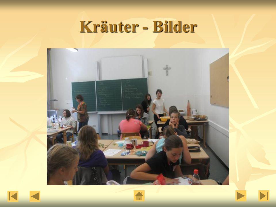 Kräuter - Bilder