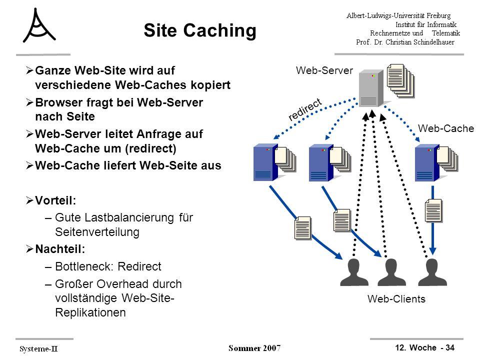 Site Caching Ganze Web-Site wird auf verschiedene Web-Caches kopiert