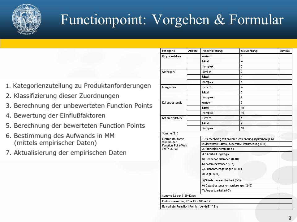 Functionpoint: Vorgehen & Formular