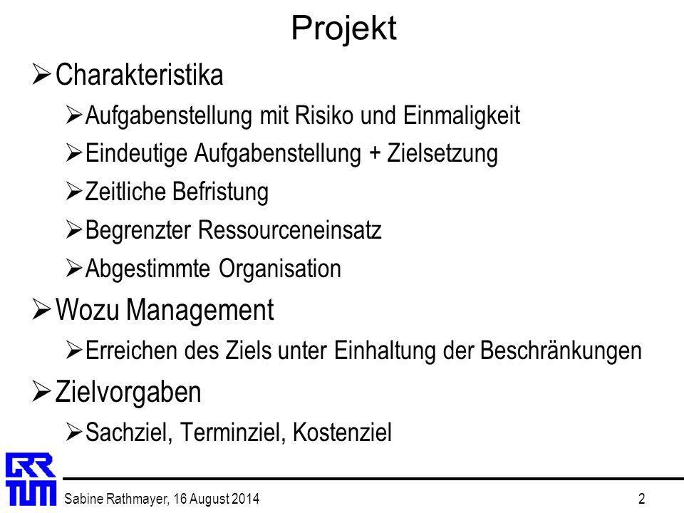 Projekt Charakteristika Wozu Management Zielvorgaben