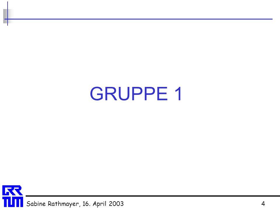 GRUPPE 1