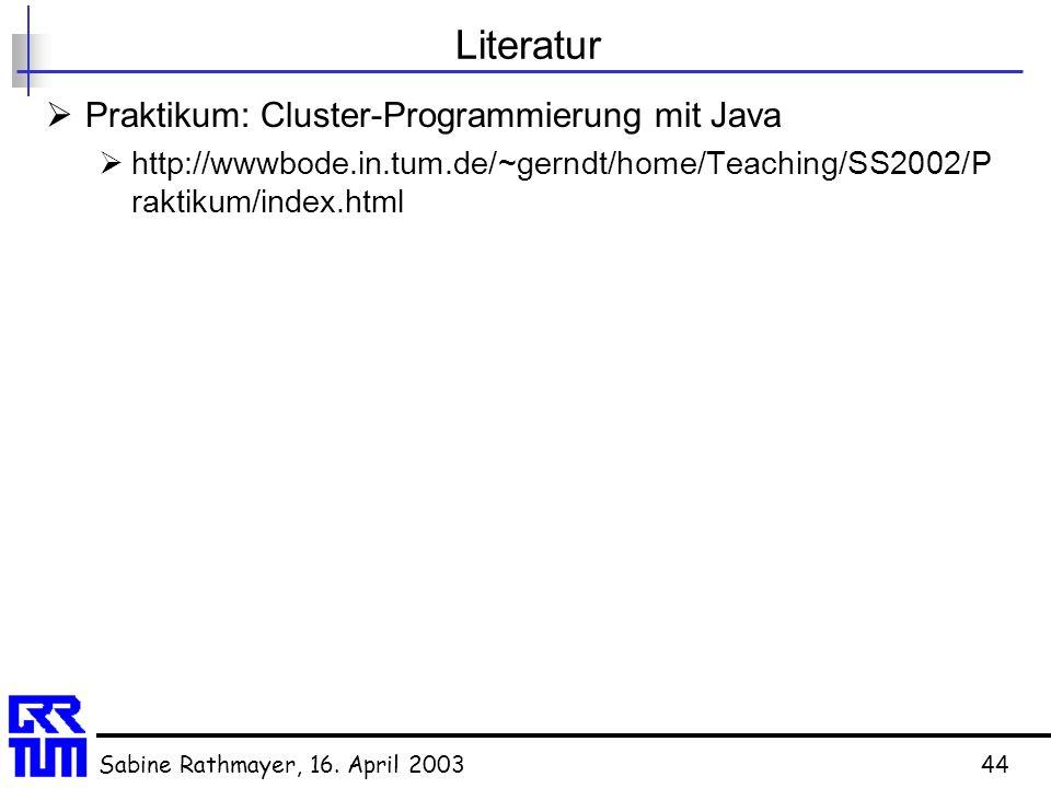 Literatur Praktikum: Cluster-Programmierung mit Java