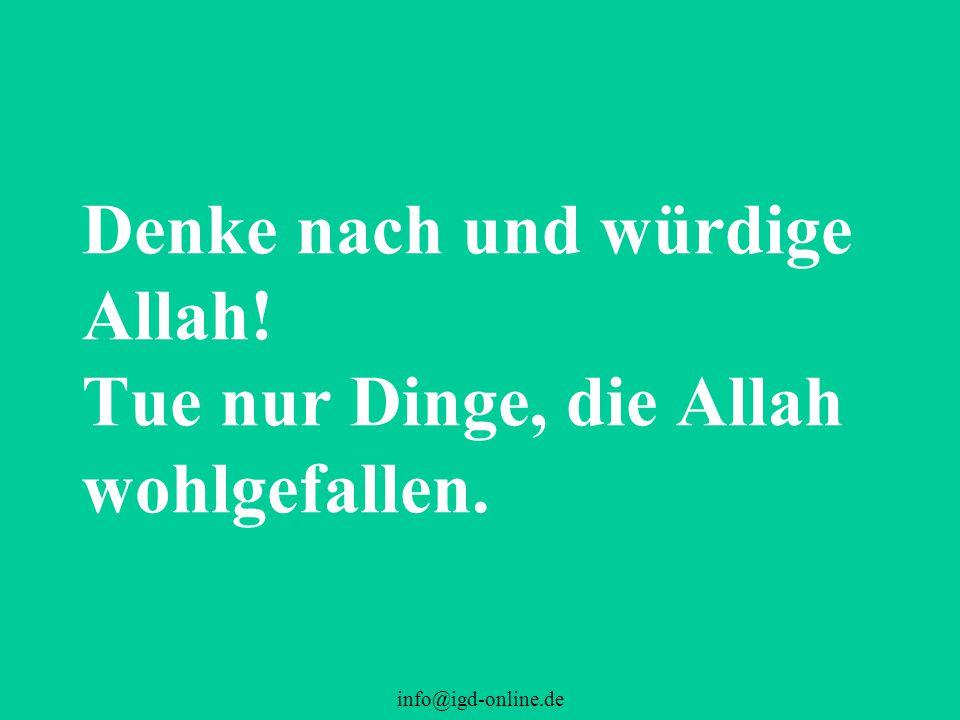 Denke nach und würdige Allah! Tue nur Dinge, die Allah wohlgefallen.
