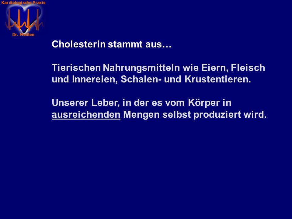 Cholesterin stammt aus…