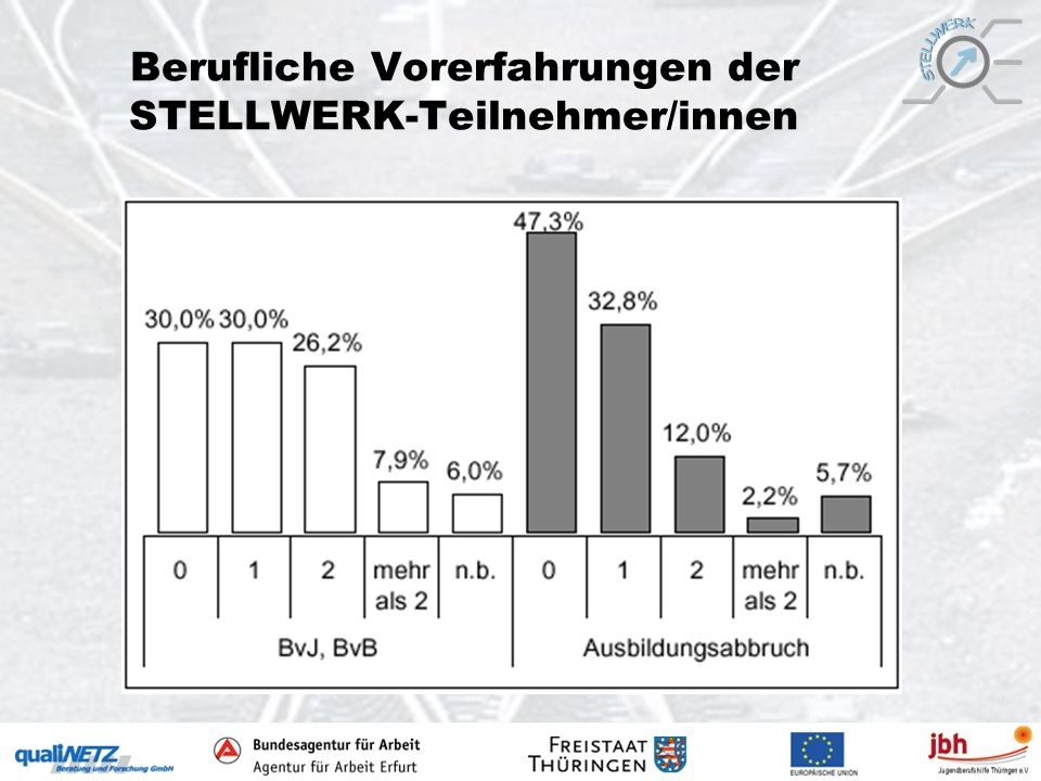 Berufliche Vorerfahrungen der STELLWERK-Teilnehmer/innen