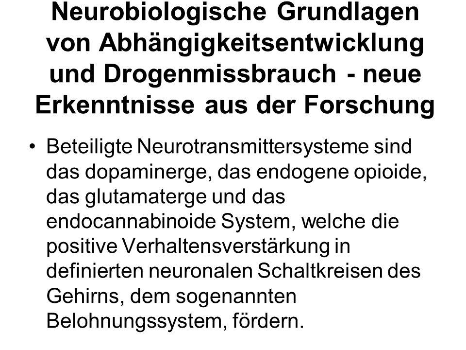 Neurobiologische Grundlagen von Abhängigkeitsentwicklung und Drogenmissbrauch - neue Erkenntnisse aus der Forschung