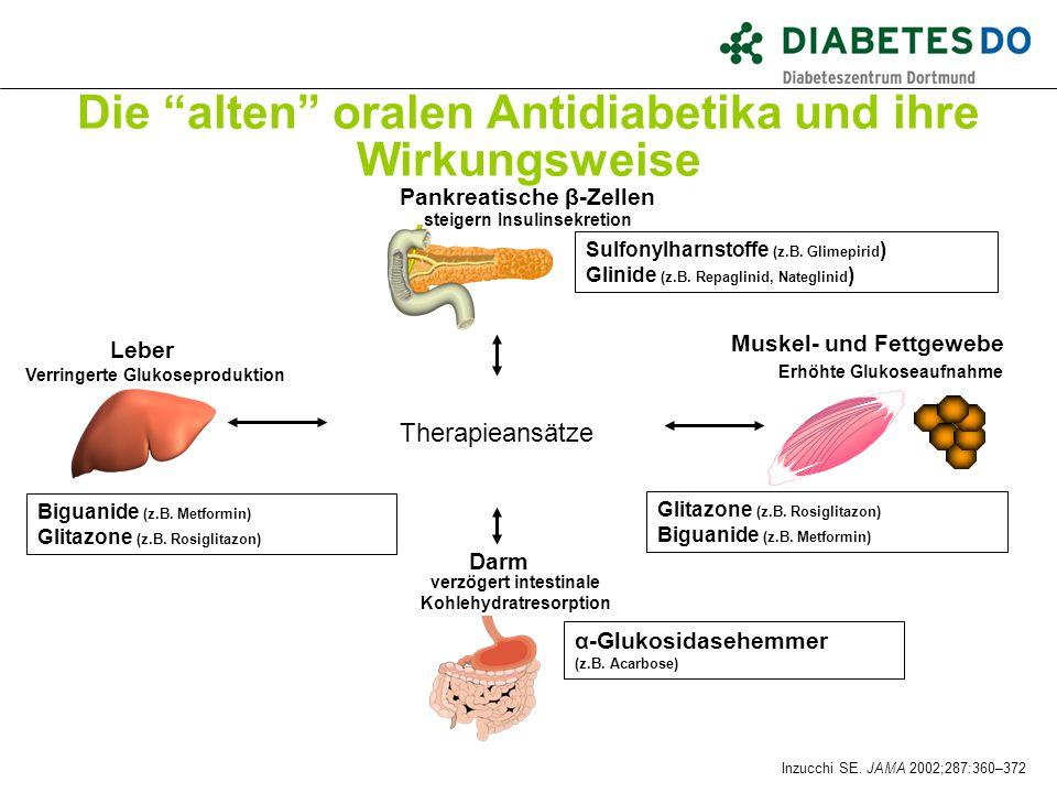 Die alten oralen Antidiabetika und ihre Wirkungsweise