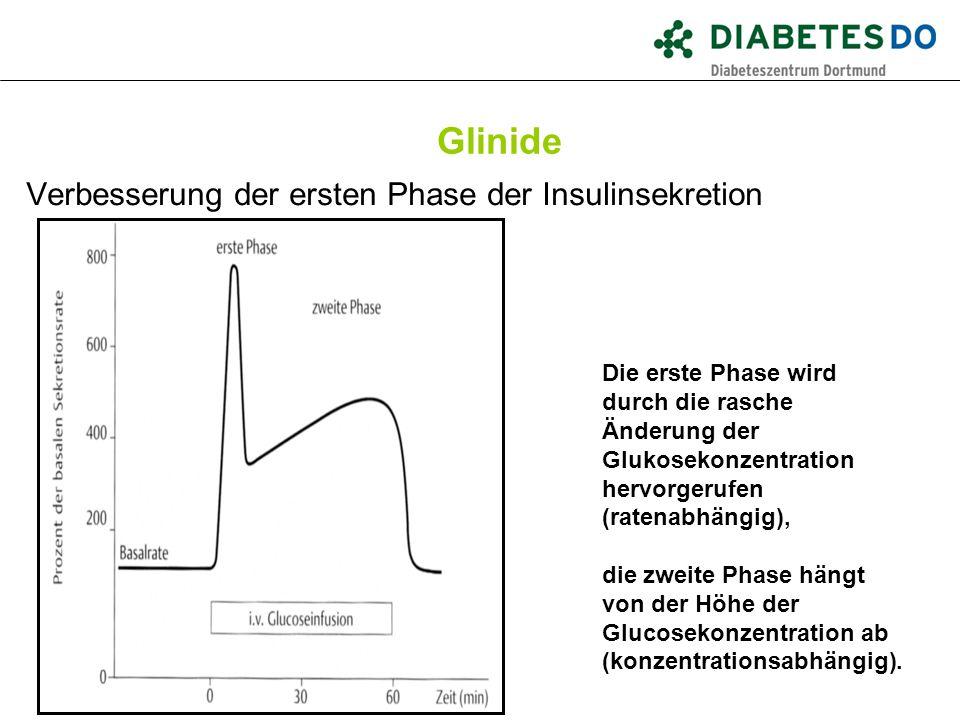 Glinide Verbesserung der ersten Phase der Insulinsekretion