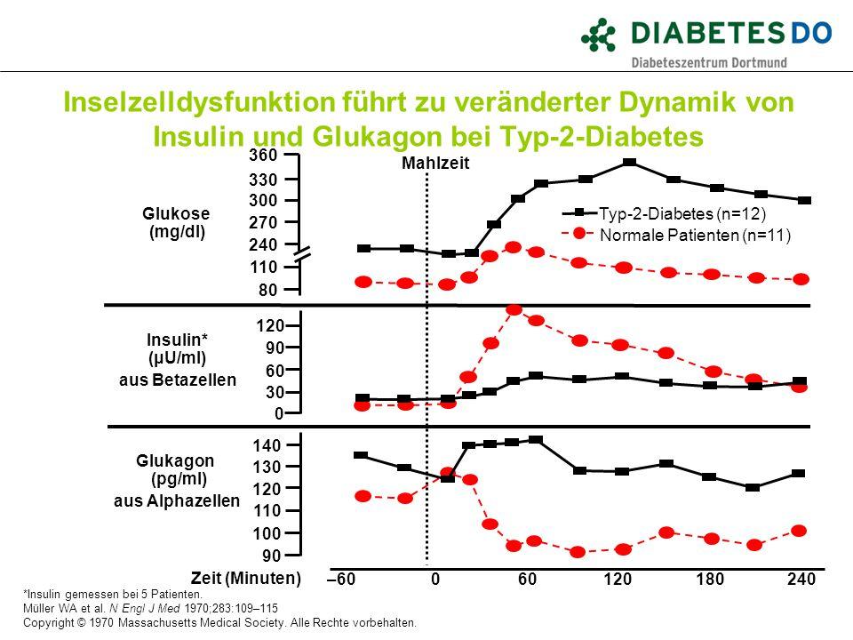 Inselzelldysfunktion führt zu veränderter Dynamik von Insulin und Glukagon bei Typ-2-Diabetes