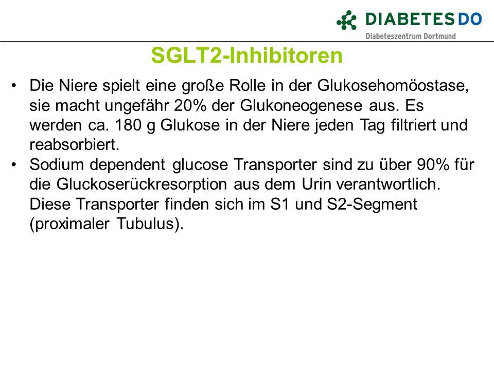 SGLT2-Inhibitoren Was ist gesichert