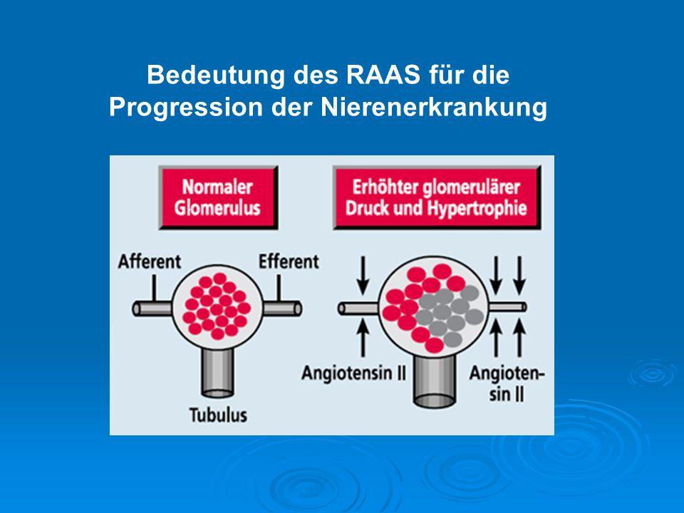 Bedeutung des RAAS für die Progression der Nierenerkrankung